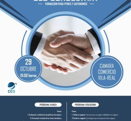 Presentacion CEO CONSULTANT 29 de octubre de 2019 en el Vivero Empresas Camara Villarreal.